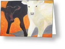 Two Calves Greeting Card