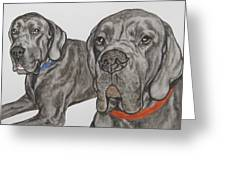 Two Cool Danes Greeting Card