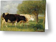 Two Cows In A Meadow Greeting Card