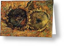 Two Cutted Sunflowers Greeting Card