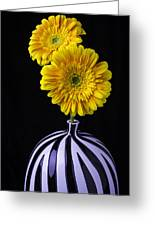Two Daises In Striped Vase Greeting Card
