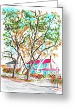 Two Dark Trees In West Hollywood -california Greeting Card
