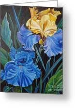 Two Fancy Iris Greeting Card