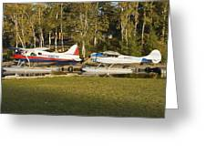 Two Float Planes On Moosehead Lake Near Greenville Maine  Greeting Card
