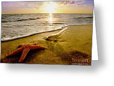 Two Friends On The Beach Greeting Card