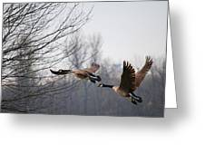 Two Geese In Flight Greeting Card