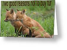 Two Good Reasons Not To Buy Fur Greeting Card