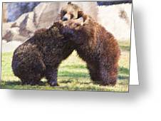 Two Grizzly Bears Ursus Arctos Play Fighting Greeting Card