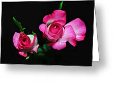 Two In Pink Greeting Card