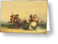 Two Indians Killing A Buffalo Greeting Card