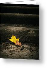 Two Leaves On A Staircase Greeting Card
