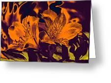 Two Lilies Gradient Ink Outline Greeting Card