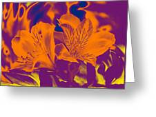 Two Lilies Gradient Greeting Card