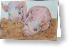 Two Little Piggies Greeting Card