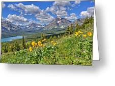 Two Medicine Valley Greeting Card