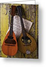Two Old Mandolins Greeting Card