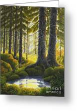 Two Old Spruce Greeting Card