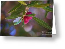 Two Olives Please Greeting Card