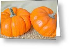Two Orange Pumpkins Greeting Card