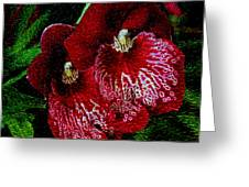 Two Orchids Greeting Card by Elizabeth Winter