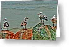 Two Pairs Or 4 Of A Kind Greeting Card