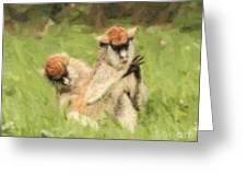 Two Patas Monkeys Erythrocebus Patas Grooming Greeting Card