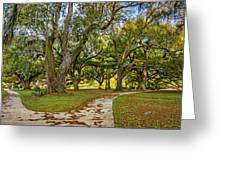 Two Paths Diverged In A Live Oak Wood...  Greeting Card
