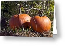 Two Pumpkins Greeting Card