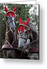 Two Red Devils Greeting Card