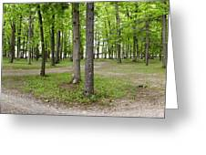 Two Roads Diverged Letchworth State Park Panorama Greeting Card
