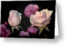 Two Roses And A Fly Greeting Card by Tomasz Dziubinski