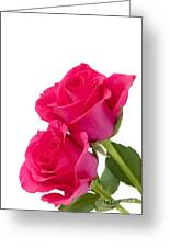 Two Roses Greeting Card