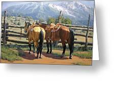 Two Saddle Horses Greeting Card
