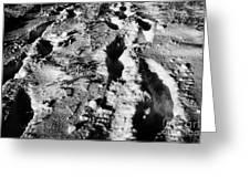 two sets of fresh footprints crossing deep snow in field Forget Saskatchewan Canada Greeting Card by Joe Fox