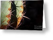 Two Shades Of Cactus Greeting Card