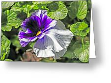 Two Shades Of Color Greeting Card