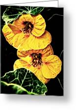 Two Shy Sisters Fractal Greeting Card
