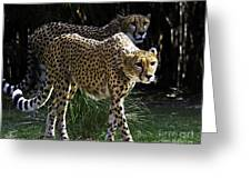 Two Sisters Hunting Greeting Card