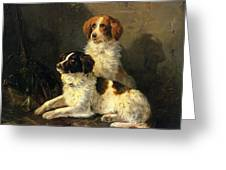 Two Spaniels Waiting For The Hunt Greeting Card by Henriette Ronner Knip
