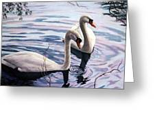 Two Swans A Swimming Greeting Card