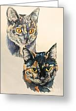 Two Torti's Greeting Card