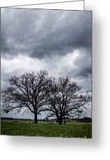 Two Trees Beneath A Dark Cloudy Sky Greeting Card
