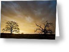 Two Trees Greeting The Sun Greeting Card