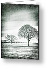Two Trees In A Field Greeting Card