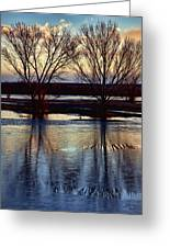 Two Trees In The Bosque Greeting Card