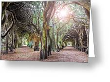 Two Tunnels Taxus Greeting Card