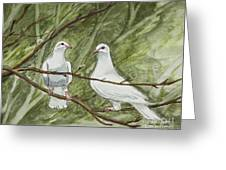 Two White Doves Greeting Card