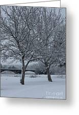 Two Winter Trees Greeting Card