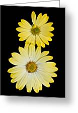 Two Yellow Greeting Card