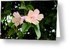 Twosome Bloom Greeting Card